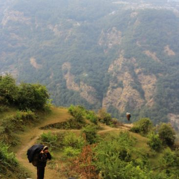 Mardi Himal (203)